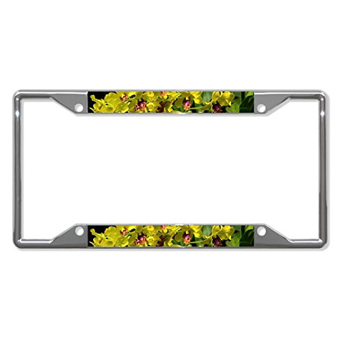 Dendrobium Orchid Flower Chrome Metal License Plate Frame Tag Holder Four Holes