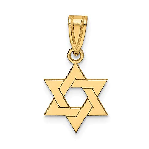 14k Yellow Gold Jewish Jewelry Star Of David Pendant Charm Necklace Religious Judaica Fine Jewelry Gifts For Women For Her (White Pendant Jewish Gold Religious)