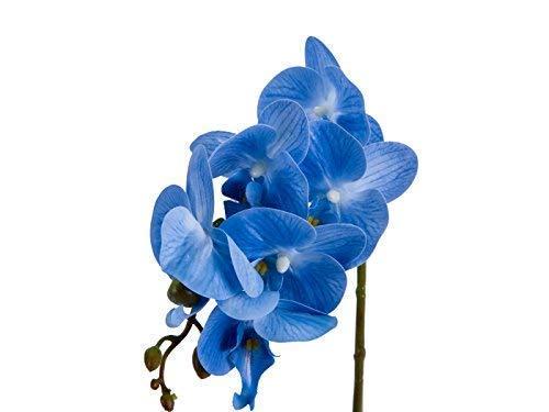 IMIEE-Phaleanopsis-Arrangement-with-Vase-Decorative-Artificial-Orchid-Flower-Bonsai-Blue
