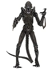 "From the thrilling Aliens movie, the Warrior Alien gets the ""Ultimate"" action figure treatment! The assortment includes both blue and brown Aliens. We've upgraded the deadly creatures, which now have added articulation and plenty of extras: e..."