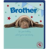 Cute Brother Birthday Card... by UKG