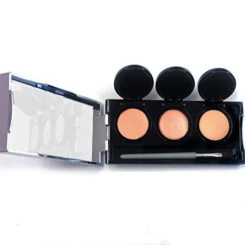Full Coverage Concealer Cream by Dermaflage, 3 in 1 Pro Concealer Palette, Waterproof Face & Body Concealer, Blendable Formula for Perfect Match. 3 Colors + Concealer Brush, 6.9g/.24oz (Light)