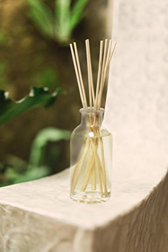Urban Natural - Urban Naturals White Tea Scented Reed Diffuser Sticks Set by Delicately sweet, yet herbal with subtle notes of cedar, light citrus and vanilla. 3.4 oz
