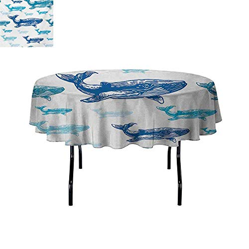 Curioly Sea Animals Elastic Edge fit Colorful Realistic Engraved Style of Whale Animals Dangerous Creature Print Suitable for Most Home Decor D70 Inch Blue White (Most Dangerous Sea Creatures Of All Time)