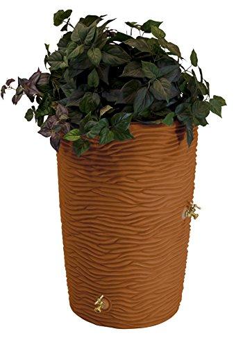 - Good Ideas Imp-L50-TC Impressions Palm Rain Barrel, 50 Gallon, Terra Cotta