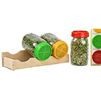 Sprouting Kit with Three Mason Sprouting Jars, Toppers, Sprouting Cradle and Instructions