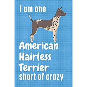 I am one American Hairless Terrier short of crazy: For American Hairless Terrier Dog Fans 25