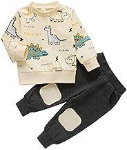 Aunavey Baby Boy Sweatshirt Outfit Cartoon Dinosaur Long Sleeve Tops Pants Sweatshirt 2 Pieces Outfit