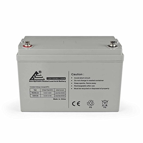 - ExpertPower 12V 100Ah Solar Wind Power AGM Sealed Lead Acid Battery, 65 Pound