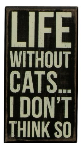 Primitives by Kathy Box Sign, 4 by 7.5-Inch, Life without Cats