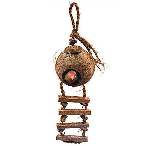 sungrow-bird-house-with-ladder-100-natural-coconut-husk-beautiful-nesting-house-or-bird-feeder-susta