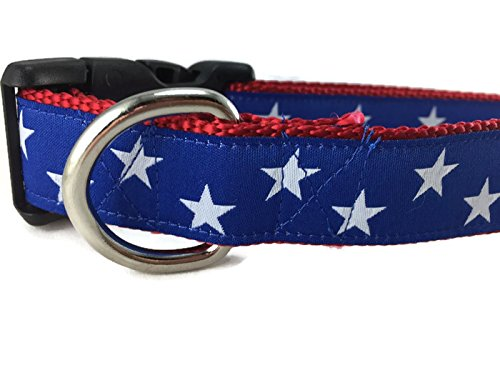 CANINEDESIGN QUALITY DOG COLLARS American Dog Collar, Caninedesign, Stars, Red, Blue, 1 inch wide, adjustable, plastic buckle, quick release, medium and large (Blue Stars, Medium 13-19