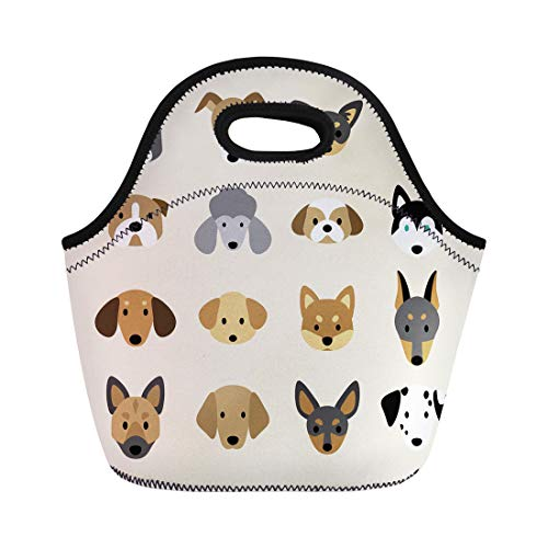 Semtomn Neoprene Lunch Tote Bag Face of Breeds Dog Greyhound Pet Animal Boston Terrier Reusable Cooler Bags Insulated Thermal Picnic Handbag for Travel,School,Outdoors, Work