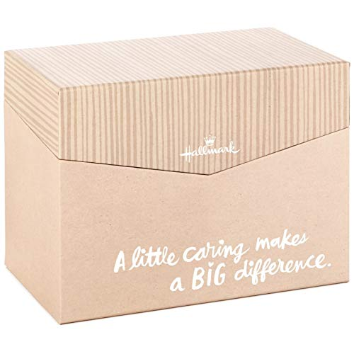 - Greeting Card Organizer Box
