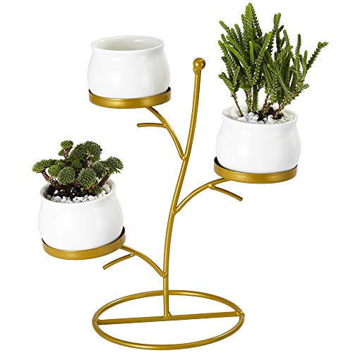 Flowerplus Small Succulent Planter Pots, 3 Pack 2.75 Inch White Ceramic Round Decorative Cactus Flower Plant Pot With Tree Tier Metal Stand for Indoor Outdoor Home Office Garden Kitchen Décor (3PP025)