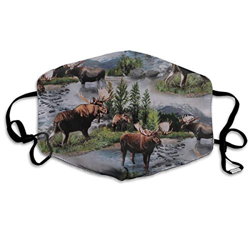 Ubnz50X Bull Moose Nature Scenic Wildlife Animals Lake Cotton Mouth Masks,Anti-dust Face Mask for Women and Men