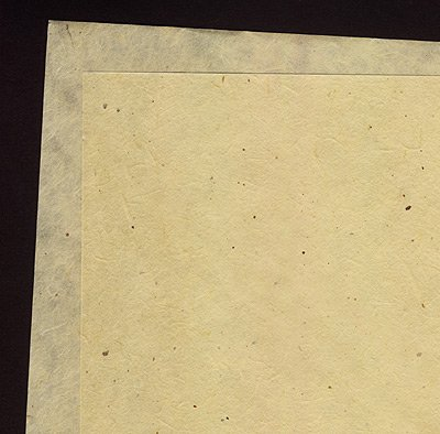 Japanese Paper- Gampi Smooth 25x37 Inch (Japanese Tissue Paper)