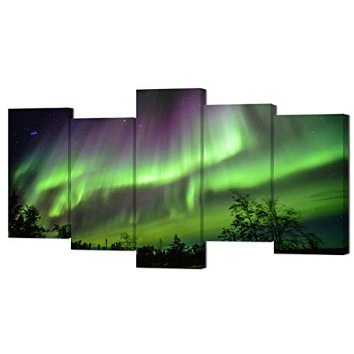 VVOVV Wall Decor - Modern Picture Paintings Nature Landscape Northern Lights Aurora Poster Art Print on Canvas Framed for Home Wall Decor,5 Piece Canvas Artwork