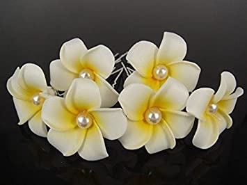 Amazon 6 pcs small white hawaiian plumeria pearl flower foam 6 pcs small white hawaiian plumeria pearl flower foam hair clip u pin usa seller mightylinksfo