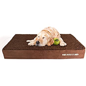 Amazon.com : The Dog's Bed, Premium Plush Orthopedic