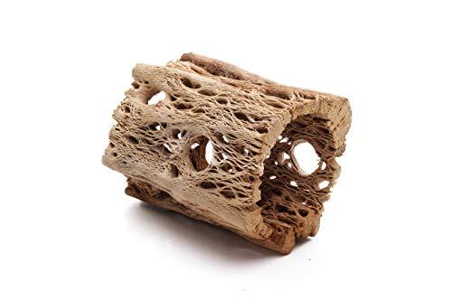 3, 6, 9, 12 Inch All Natural Teddy Bear Cholla Wood Extra Hollow Untreated Organic Aquarium Driftwood Decoration Chew Toy Shrimp Crab Pleco Cichlid Nano Tank Birds 1 or 5 Pieces (1 Piece, 3 inch) ()