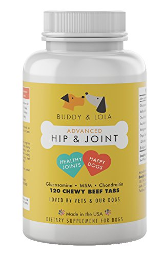 Buddy & Lola Dog Hip and Joint Supplement - 800mg Extra Strength Glucosamine for Dogs - 120 Dog Joint Supplement Chews with MSN, Chondroitin for Mobility and Arthritis Pain Relief for Dogs