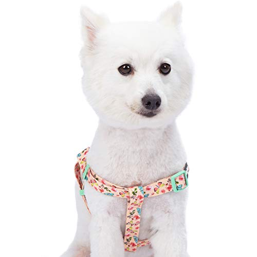 Blueberry Pet Step-in Spring Scent Inspired Rose and Butterfly Print Pastel Pink Dog Harness, Chest Girth 20 - 26, Medium, Adjustable Harnesses for Dogs
