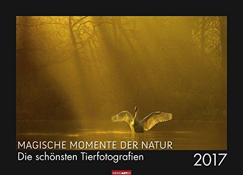 Magische Momente der Natur - Kalender 2017: Die schönsten Tierfotografien