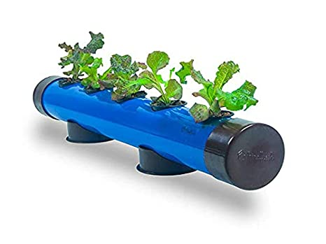 Pindfresh Hydroponic Home Kit Pindpipe 5 Plants Good For Leafy Greens Beginner System Reusable For Indoor Outdoor Seeds Included Blue Amazon In Garden Outdoors