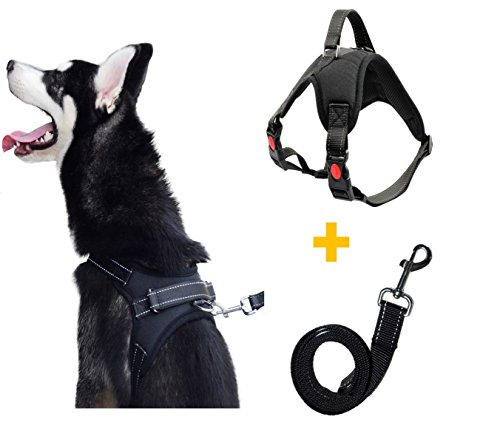 Pawya No Pull No Choke Dog Harness & Leash Set for All Breed, Reflective and Adjustable, With Handle for More Control,Perfect for Training, Walking, Hiking (Large, Black) (Pit Bull Bully)