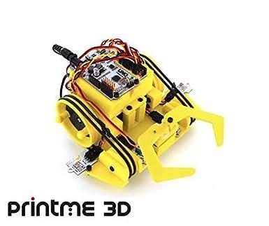 BQ PrintBot Escarabajo Amarillo Robots: Amazon.es: Amazon.es