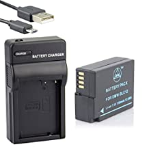 QIAOJINLIN Backup Energy USB Travel Kit for Panasonic DMW-BLC12E DMW-BLC12PP Lumix DMC-G5 DMC-G6 DMC-G7 DMC-GH2 DMC-FZ200 DMC-FZ200GK DMC-FZ1000 V-LUX4 Leica Q Digital Camera