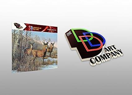Amazon Com Three Bucks And A Doe Deer Hunting 3d Lenticular Poster
