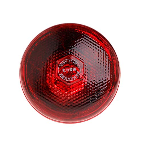 Stebcece Red Brooder Light Heat Lamp Bulb Thermal Lamp for Chicken Coop Hen House (150W) ()