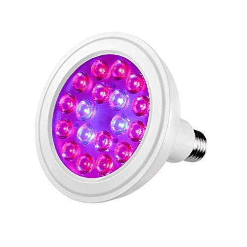 Best Led Light For Sump in US - 2