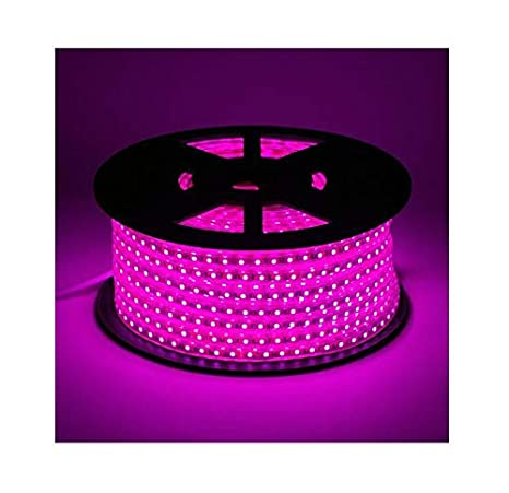 buy popular b2e1f 31e17 Buy Mufasa LED Strip Light Waterproof Roll 10 Meter (120 led ...