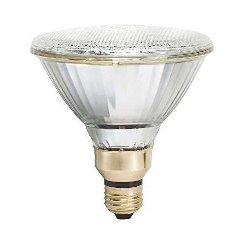 Par Metal Halide Lamp - Philips 456533  100W PAR38 4000K Cool White Metal Halide Flood Bulb