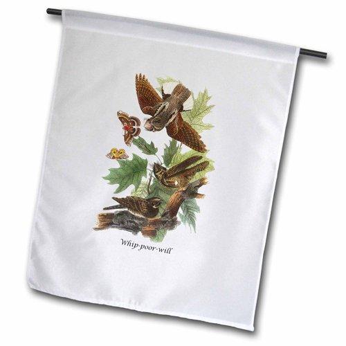 3dRose fl_114061_1 Whip-Poor-Will by John James Audubon Garden Flag, 12 by 18