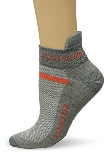 Icebreaker Men's Multisport Ultra Light Micro Socks, LG - Fossil/Heat