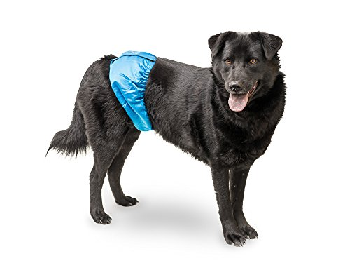 Mr. Peeper's Male Wrap, Belly Band, Washable Diaper for Dogs