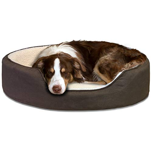 FurHaven Pet Dog Bed | Orthopedic Oval Lounger Pet Bed for Dogs & Cats, Espresso, Large