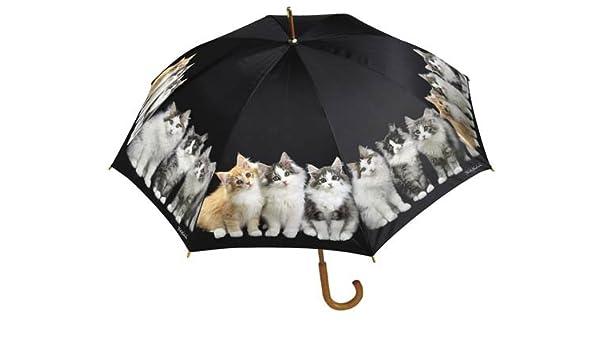 Keith Kimberlin gatitos grande stick paraguas gatos nuevo: Amazon.es: Deportes y aire libre