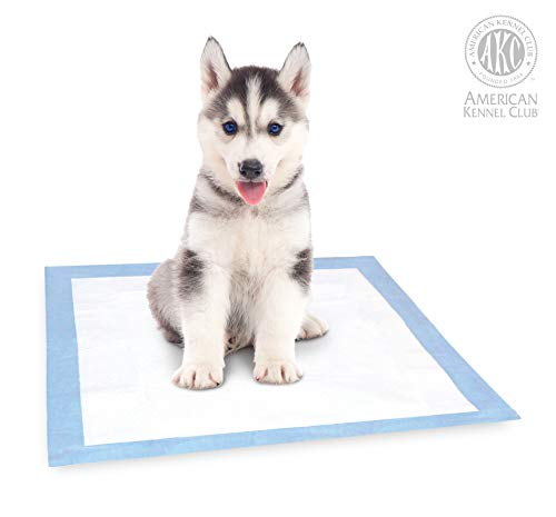 Buy potty pads for small dogs
