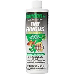Kordon #39856 Rid Fungus- Disease Treatment for Aquarium, 16-Ounce