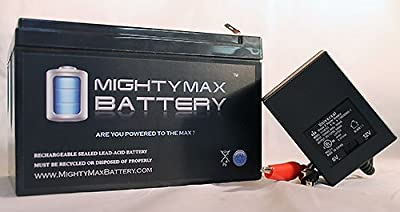 ML12-12 - 12 VOLT 12 AH SLA BATTERY F2 TERMINAL INCLUDES 12V CHARGER - Mighty Max Battery brand product