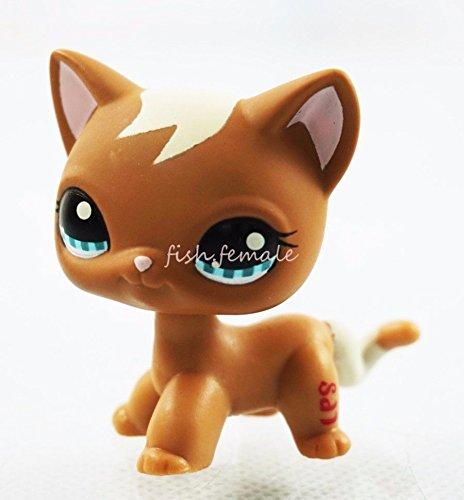 Brown Cat Kitty Lot Blue Eyes Short Hair Hasbro Littlest ...