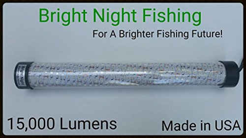 Bright Night Fishing Under Water Light Green Led 15000 Lumens Night Fishing 300 LED Green Priority Shipping Submersible Salt fresh water dock light boat crappie 12v dc (optional 110v ac) BR:15000 by Bright Night Fishing (Image #4)