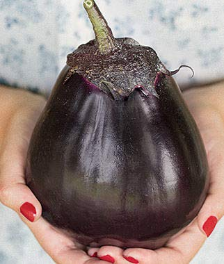 Cicitar Garden- 100pcs Rare Eggplant Jewel-Toned, Meatball Hybrid, High-yielding Organic Vegetable Seeds Exotic Hardy Perennial Garden