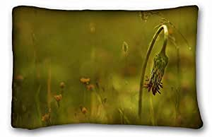 """Custom Characteristic Nature DIY Pillow Cover Size 20""""X30"""" suitable for Twin-bed"""