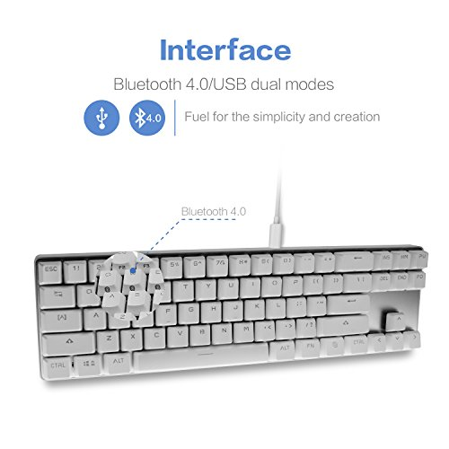 5fcad4ee3b2 Drevo Calibur 71-Key RGB LED Backlit Wireless Bluetooth 4.0 Mechanical  Keyboard Blue Switch Sliver White (e5109cdf26cf93154552e040862e3a2b) -  PCPartPicker